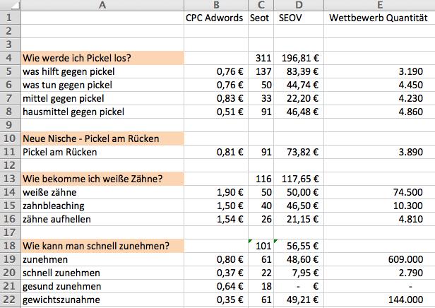Nischenseiten-Analyse-Excel
