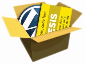 Thesis WordPress Erfahrungsbericht
