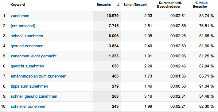 Keyword-Verteilung Google Analytics Nischenseite