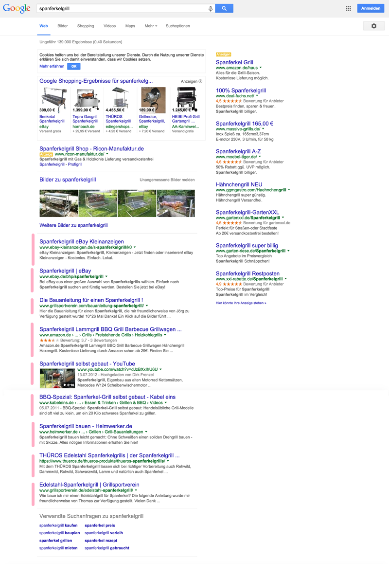 google-ergebnisse-spanferkelgrill