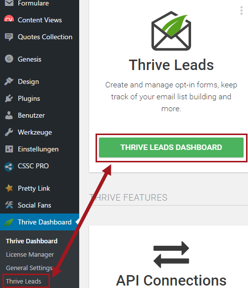 Thrive Leads Dashboard Details